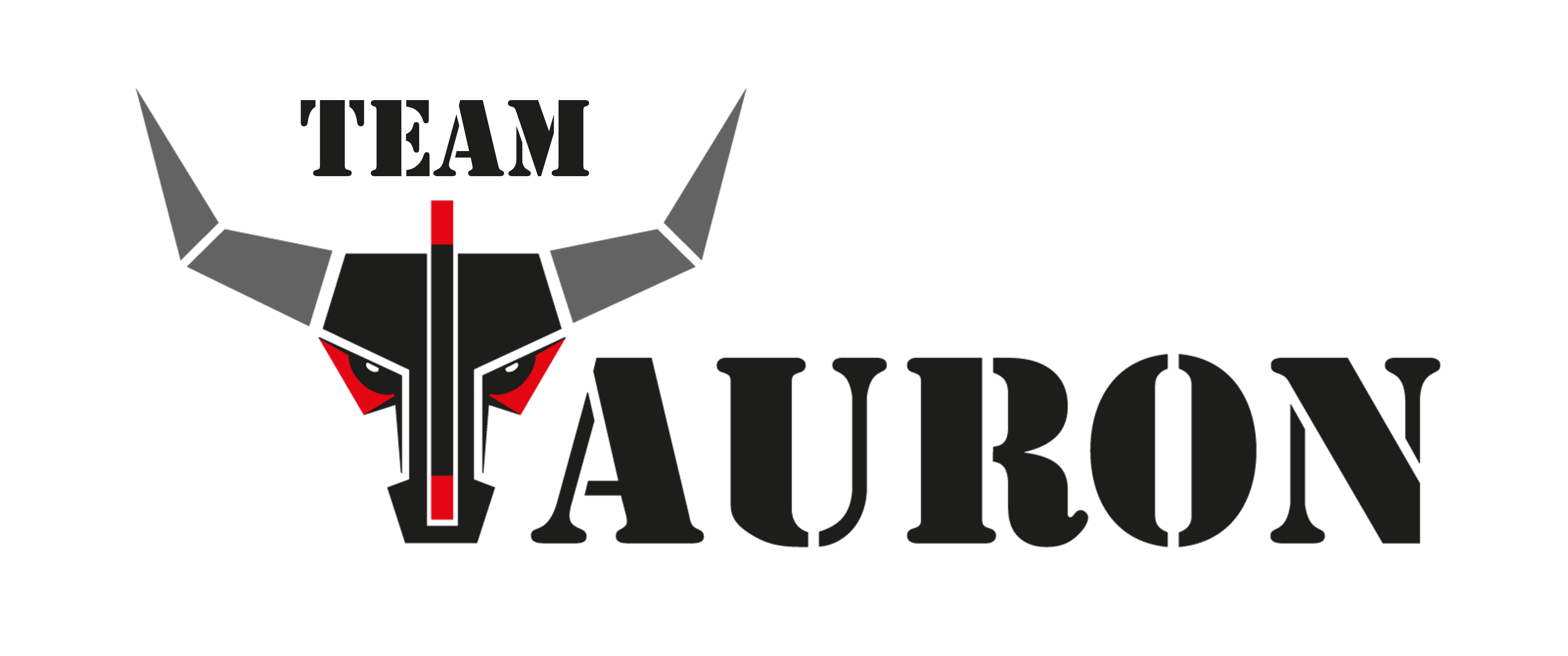 Team Tauron logo